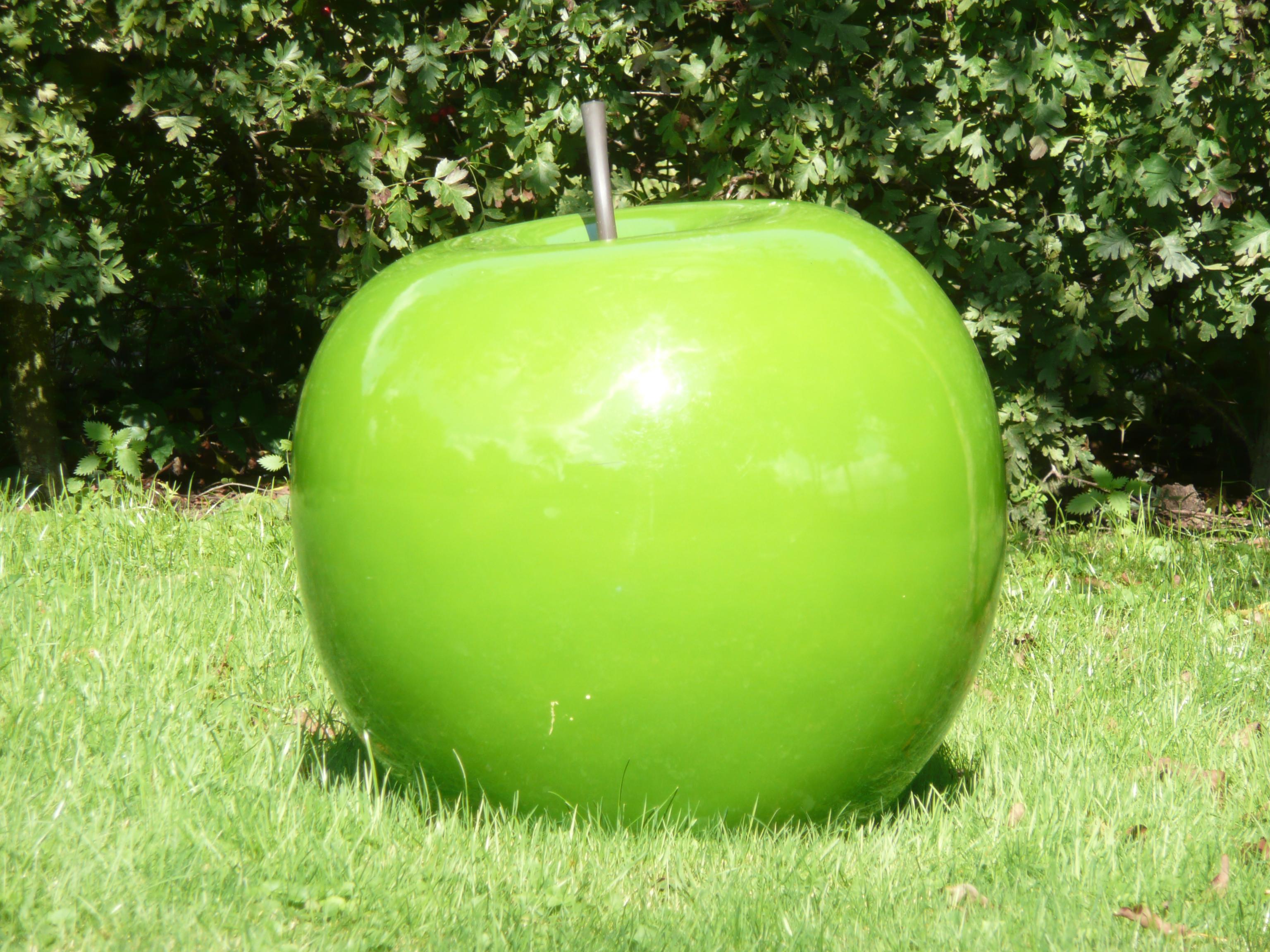 De appel valt niet ver van de boom!