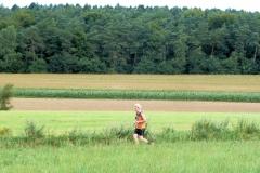Hardlopen in Montferland